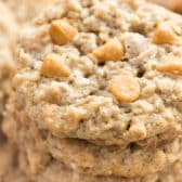 stack of oatmeal scotches