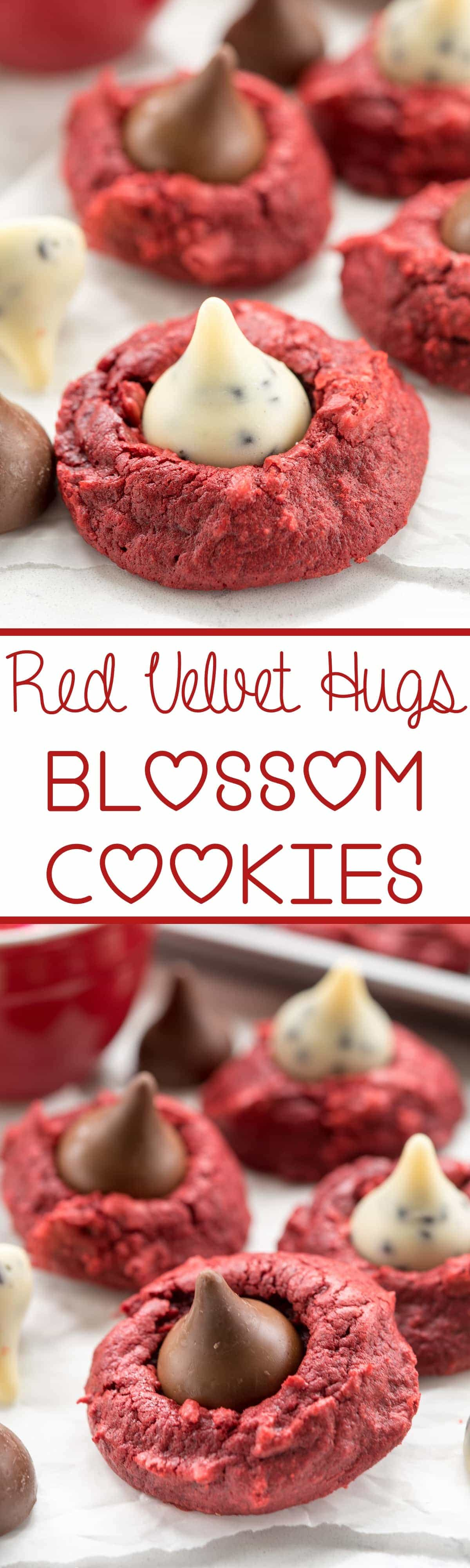 Red Velvet Blossom Cookies are easy to make with red velvet cake mix and Hershey's Kisses! These are the perfect holiday cookie, especially for Valentine's Day.