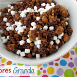 Overhead shot of s'mores granola in a white dish with the graphic title in the bottom left corner.
