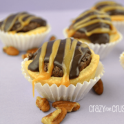 Mini turtle pies in white cupcake liners.