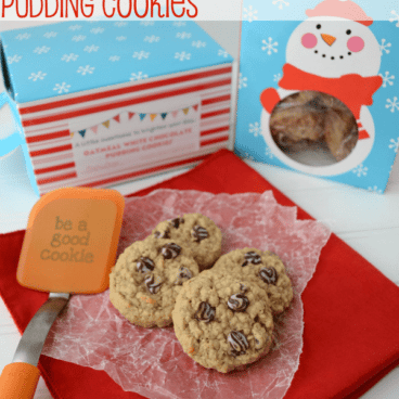 Oatmeal pudding cookies on a red napkin next to an orange spatula, with graphic title on the top.