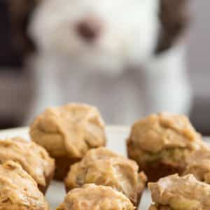 plate of pupcakes with dog behind