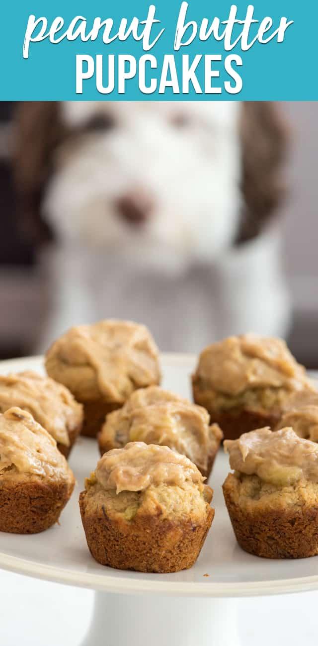 Strange Peanut Butter Pupcakes Whatever Friday Crazy For Crust Funny Birthday Cards Online Hendilapandamsfinfo