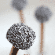 close up of microphone-cake-pops