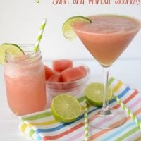 watermelon-lemonade-margarita (5 of 6)w
