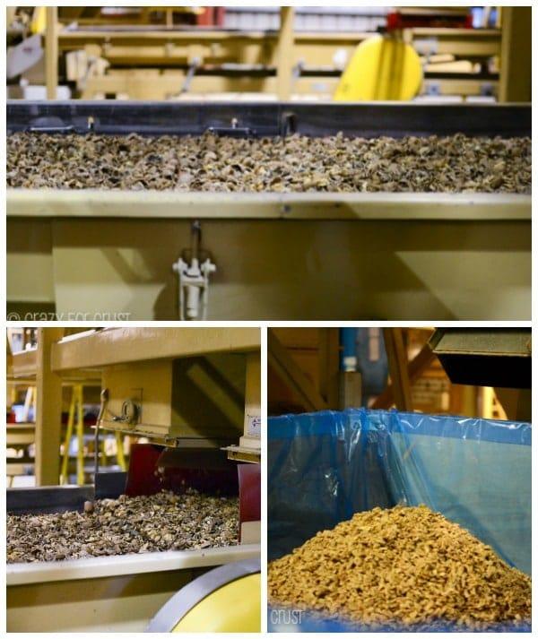 walnut-farm-tour-marianis