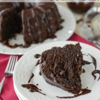 triple-chocolate-bundt-cake (5 of 10)w
