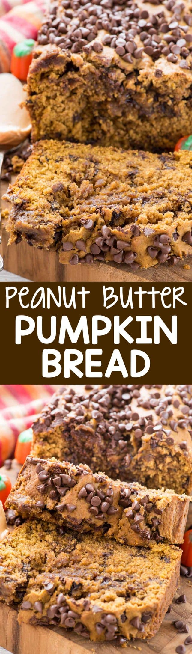 Peanut Butter Pumpkin Bread is an easy pumpkin bread recipe full of peanut butter. The flavor combination is perfect for fall and this is a great breakfast or dessert! The chocolate makes it perfect.