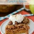 spiced pumpkin apple dump cake (2 of 5)w