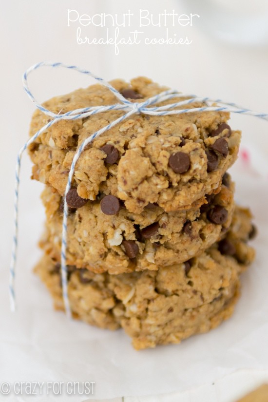 Peanut Butter Breakfast Cookies (1 of 4)w