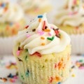 Perfect Funfetti Cupcakes (8 of 10)w