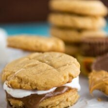 peanut butter cookie sandwiches with marshmallows and chocolate
