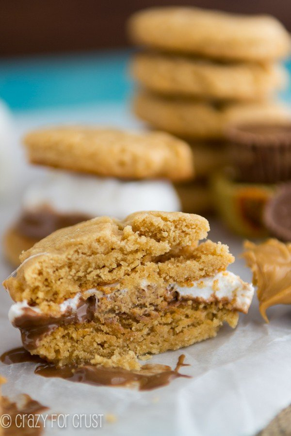 Reese's Peanut Butter Cookie S'mores | crazyforcrust.com | A s'more made with a peanut butter cup!