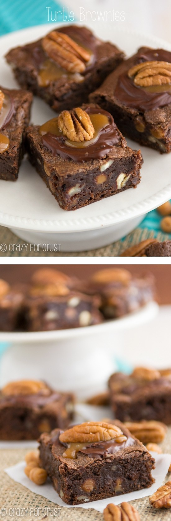 Turtle Brownies | crazyforcrust.com | A ton of turtle flavor in one brownie! The fudgy brownie is filled and topped with caramel and pecans!