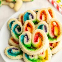 Rainbow Palmiers (8 of 14)w