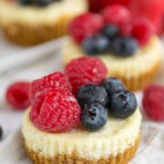 Fruit Tart Cheesecakes
