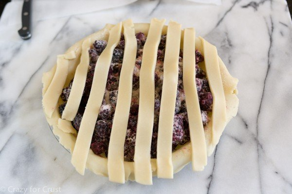 Lattice Pie Tutorial (5 of 13)