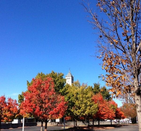 Nashville Colors