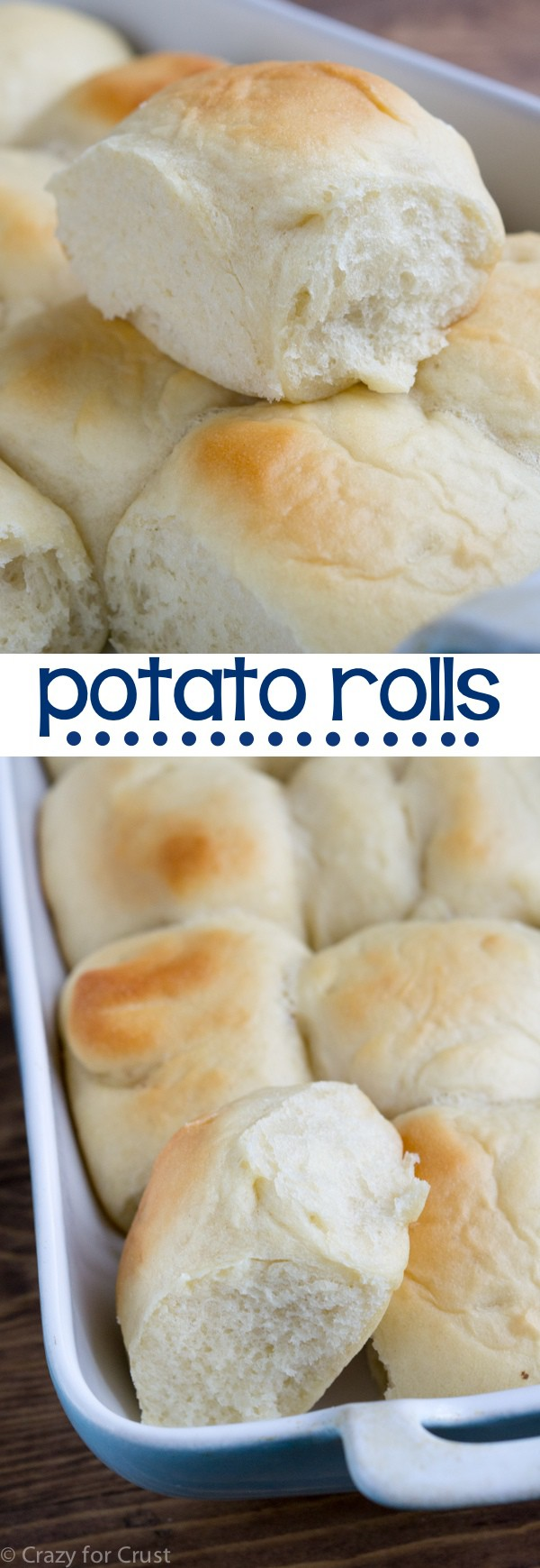 The fluffiest Potato Roll recipe you'll ever make!