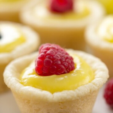 Easy Lemon Tarts on a white plate