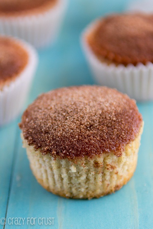 Cinnamon Sugar Cupcakes (1 of 5)