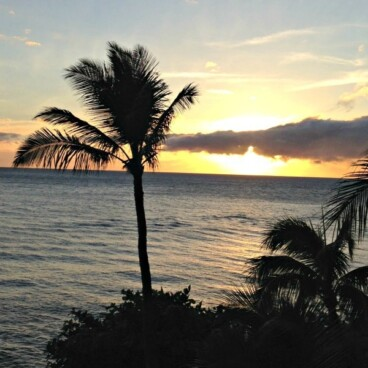 Palm tree picture of sunset with caption 9 Things you MUST See in Maui