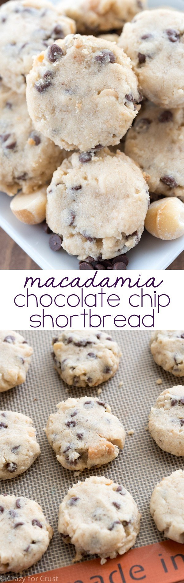 are our favorite cookies: Macadamia Chocolate Chip Shortbread Cookies ...