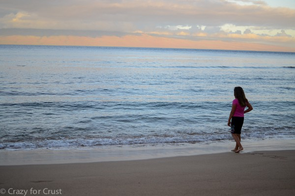 Maui2015 (6 of 8)