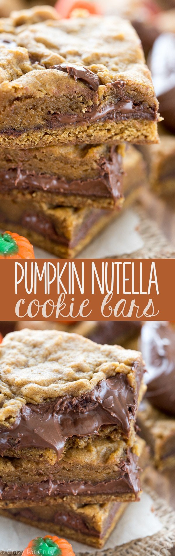 These Pumpkin Nutella Cookie Bars are the best pumpkin recipe ever! Rich pumpkin cookie bars filled with gooey Nutella - such an easy recipe the whole family will LOVE!
