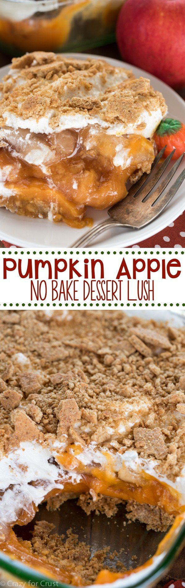 Pumpkin Apple No Bake Dessert Lush - such an easy recipe! No-bake pumpkin pie is mixed with apple pie and a cinnamon graham crust!