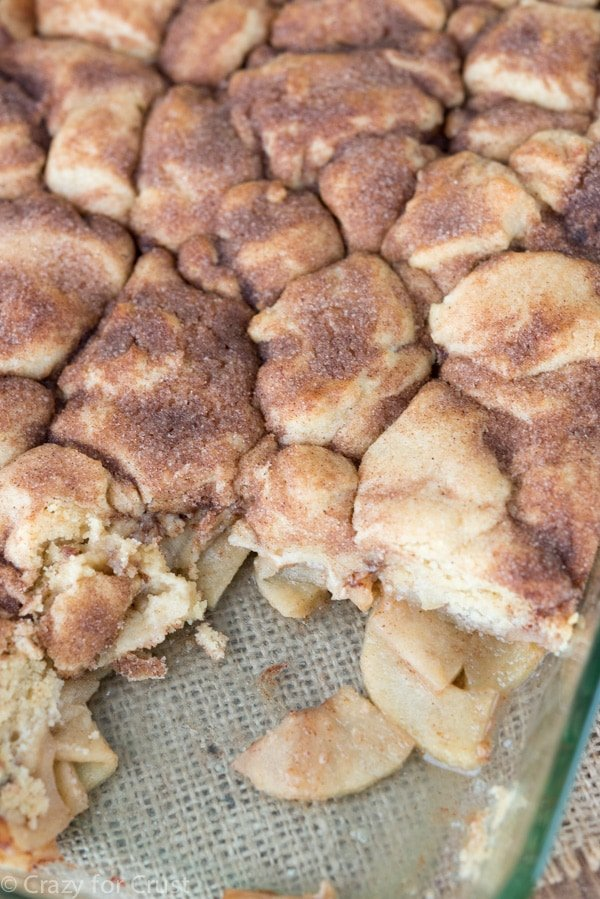 Snickderdoodle Apple Cobbler (10 of 10)