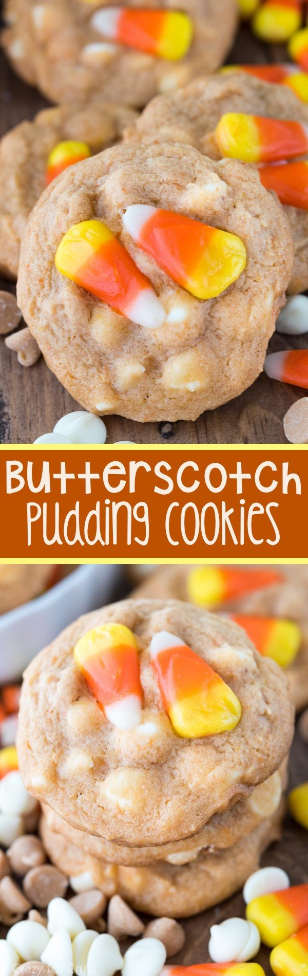 Easy Butterscotch Pudding Cookies - this easy cookie recipe starts is full of butterscotch pudding mix! Just a few ingredients to the perfect cookie that stays soft for days!