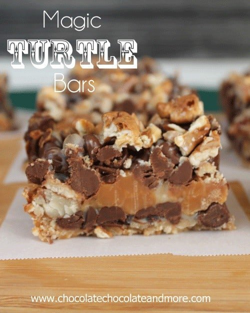 Magic-Turtle-Bars-76c