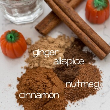 Pumpkin Pie Spices on a countertop