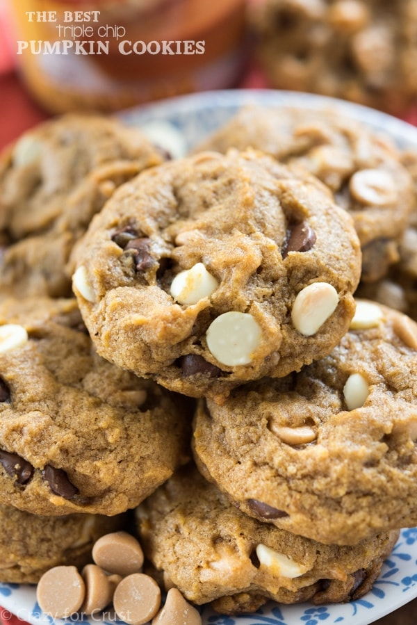 The BEST Triple Chip Pumpkin Cookies - this easy recipe is the best pumpkin cookie recipe and it's full of triple the chocolate chips!
