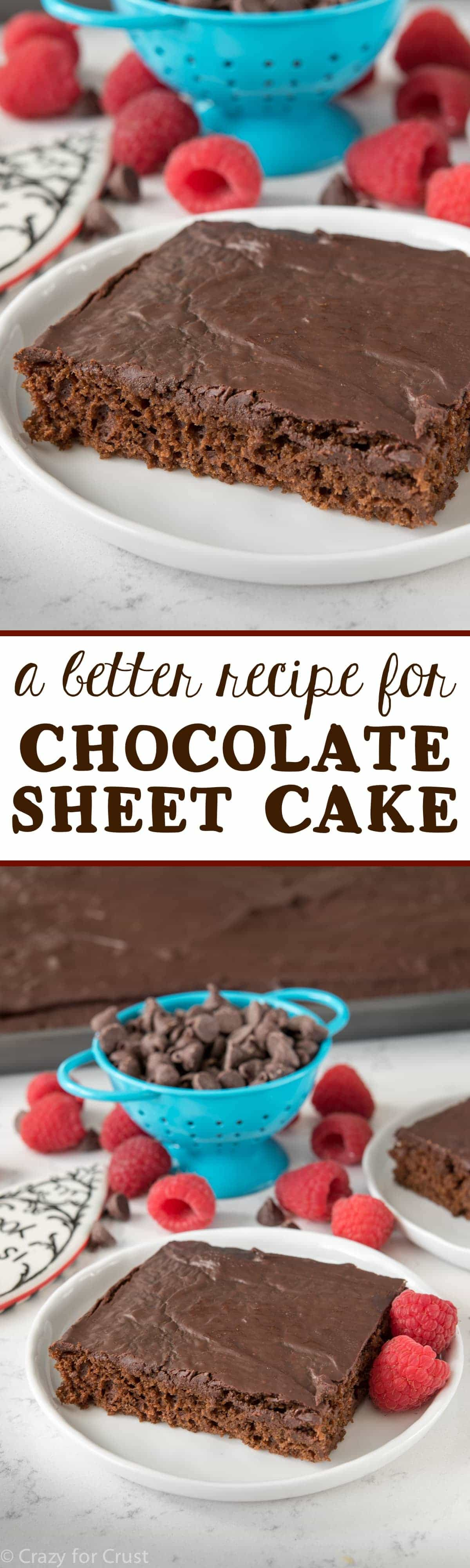 This is a Better Chocolate Sheet Cake Recipe! It's super chocolatey and moist but with NO eggs or oil! You MUST try this easy cake recipe!