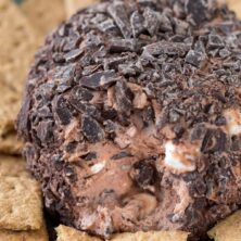 This Chocolate S'mores Cheeseball is a dessert cheeseball which is perfect for parties!
