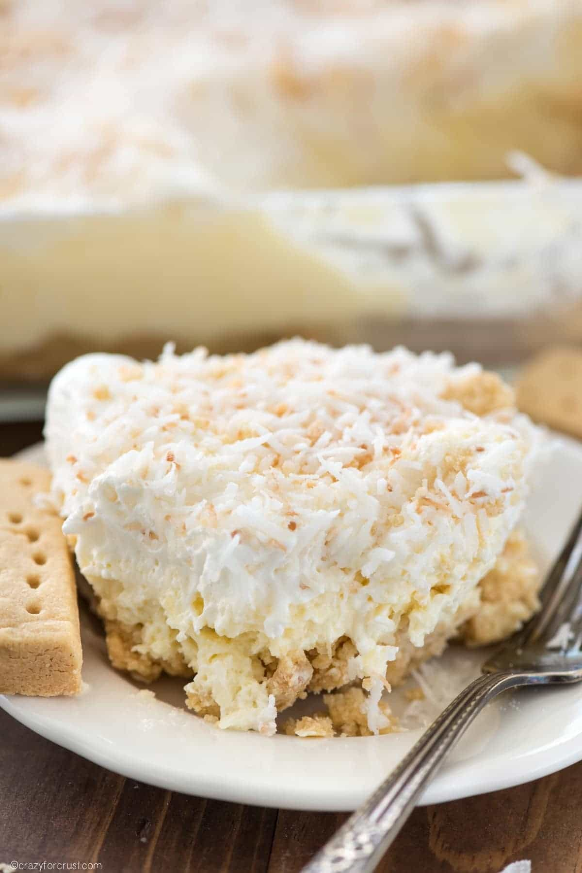 Coconut Cheesecake No Bake Dessert (8 of 8)w