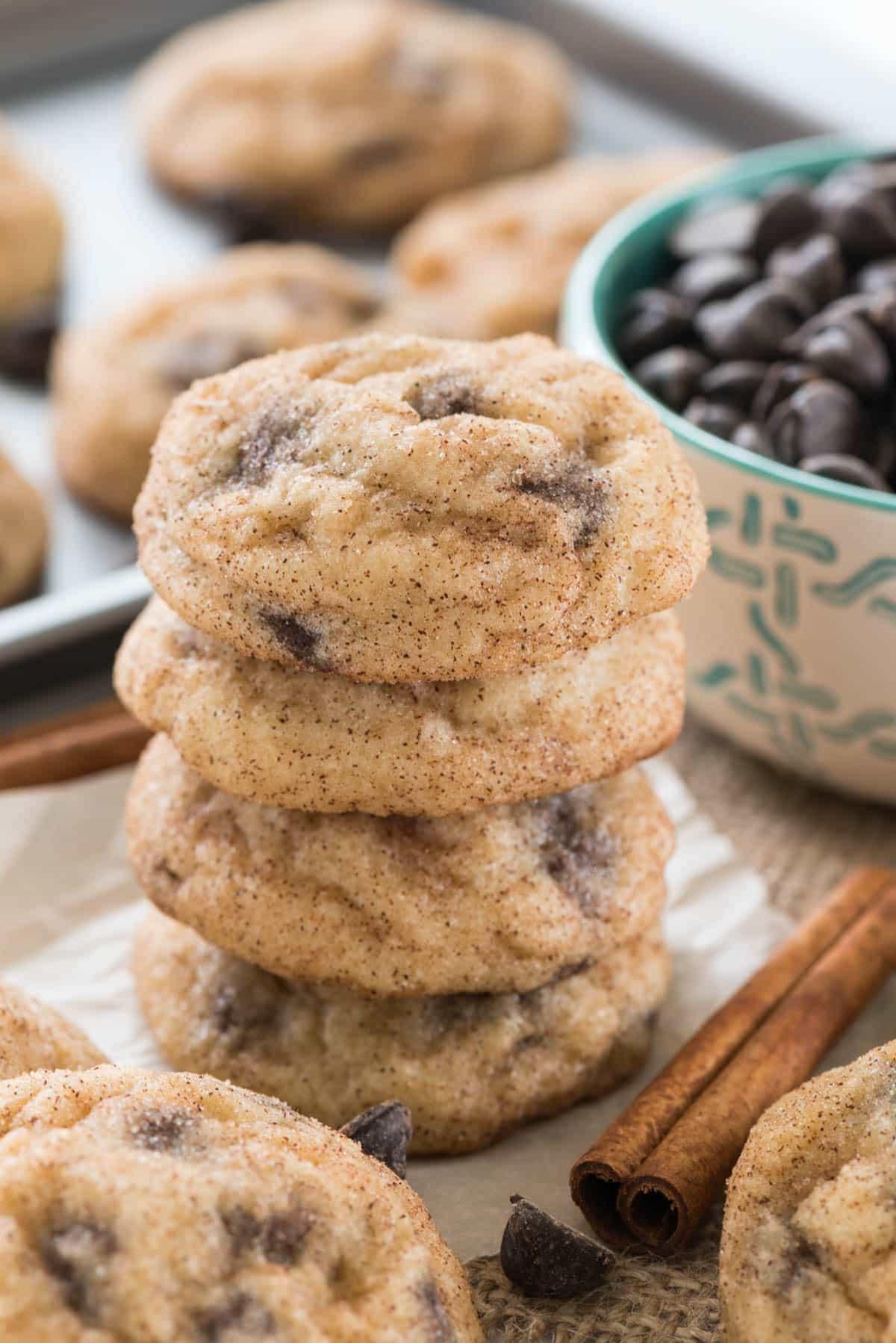 Chocolate Chip Snickerdoodles Recipe