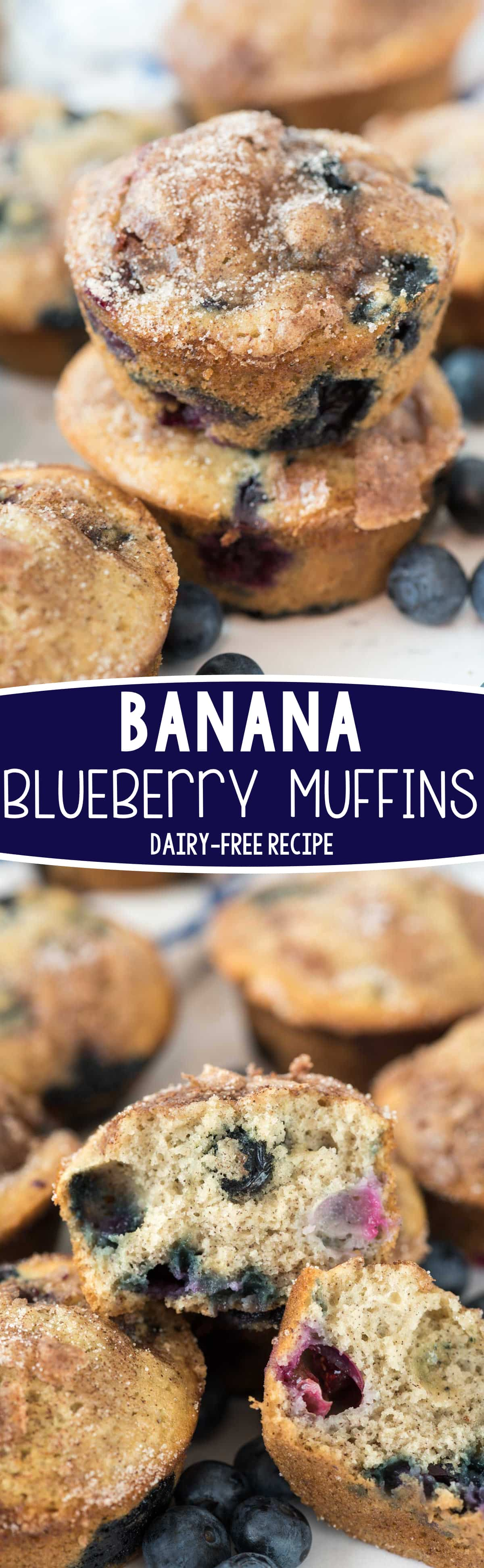 Banana Blueberry Muffins - this is an easy dairy-free blueberry muffin recipe that's also a banana muffin! EVERYONE loves these muffins!