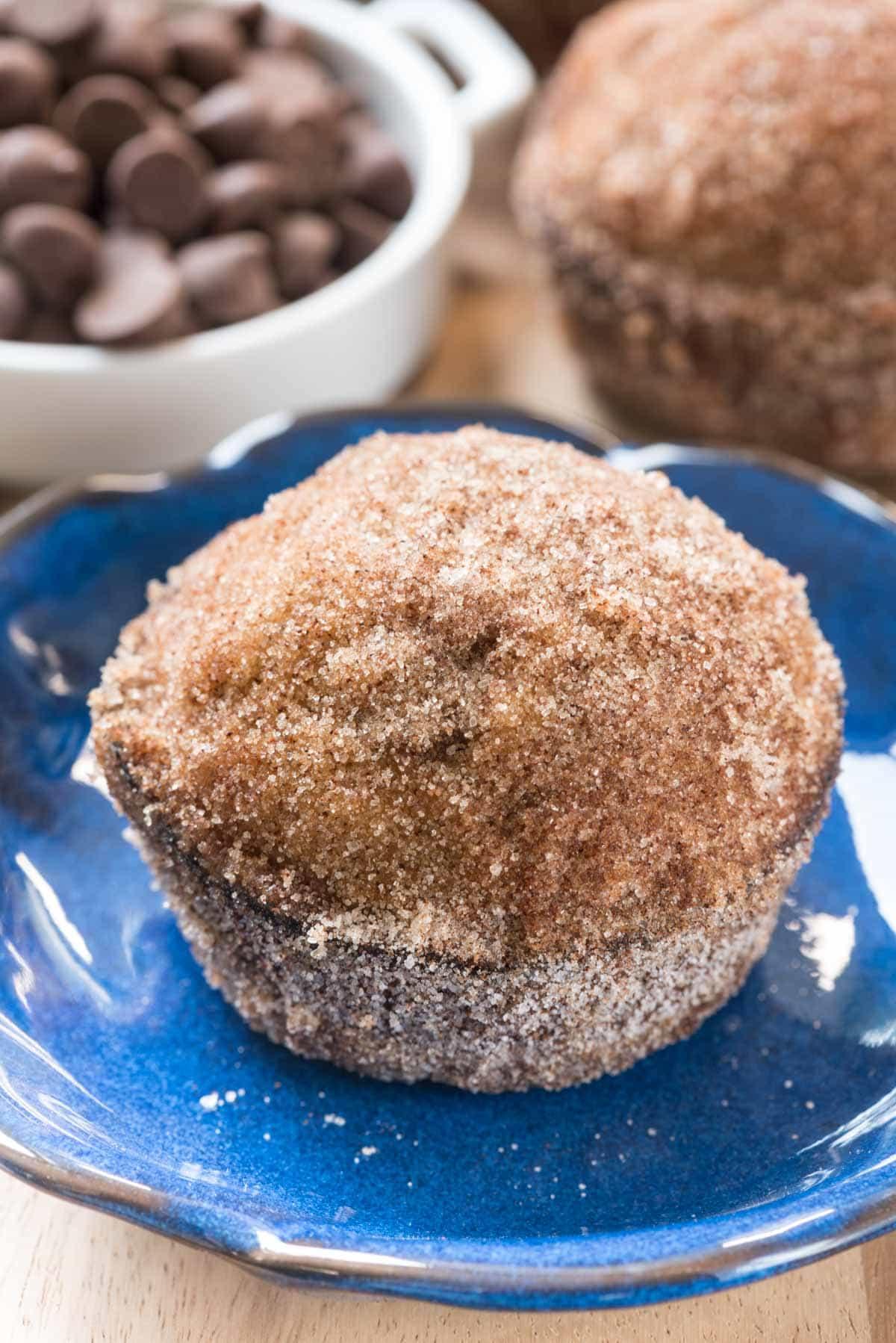 Chocolate Chip Pumpkin Doughnut Muffins - Crazy for Crust