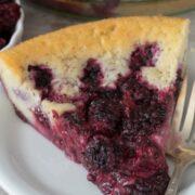 Crazy Crust Berry Pie