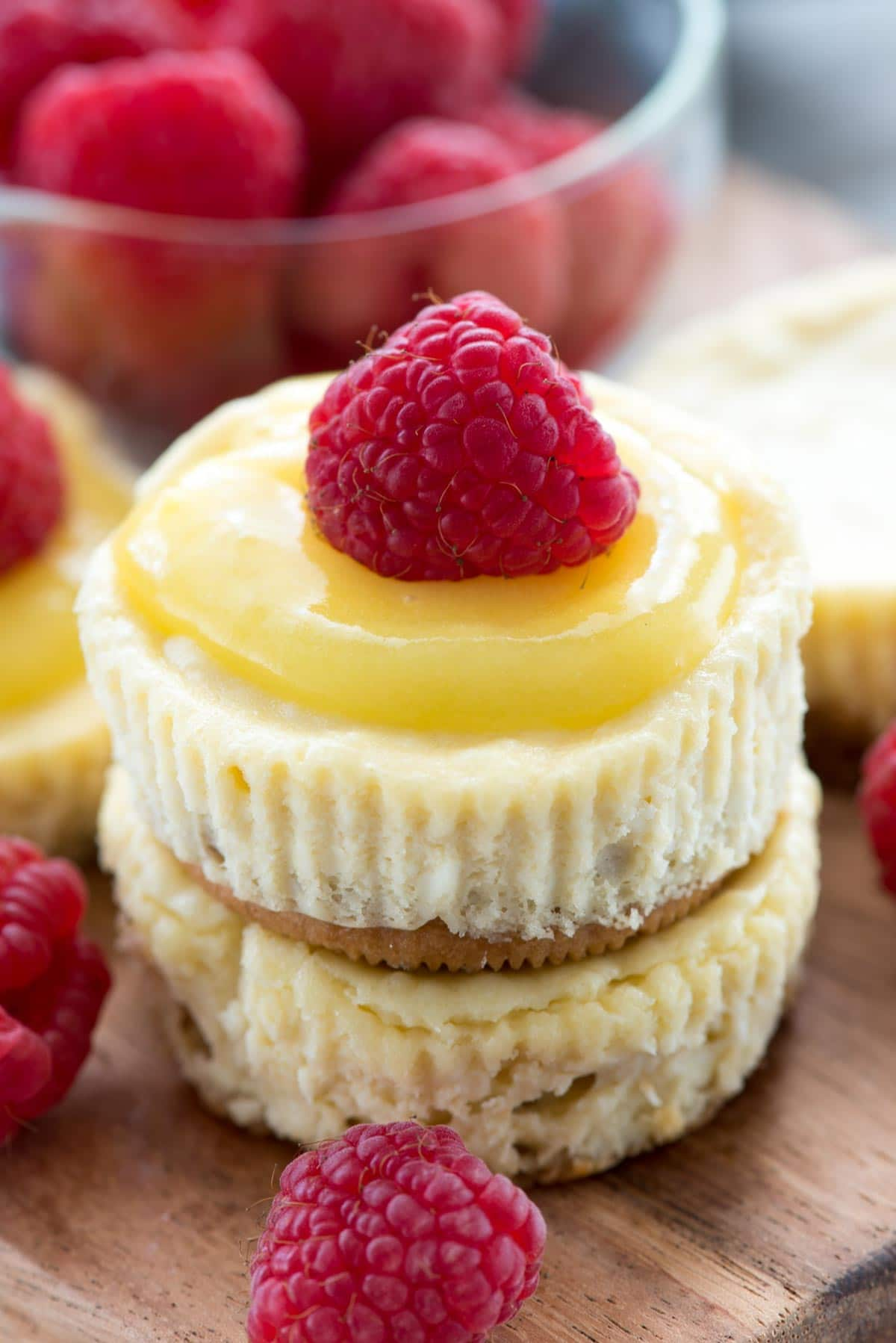 Easy Mini Lemon Cheesecakes - this easy cheesecake recipe makes 12 mini lemon cheesecakes with a Golden Oreo crust and lemon curd on top!