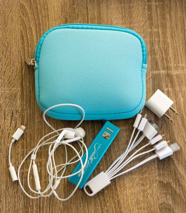 assortment of charging cords and cables - carry on essentials!