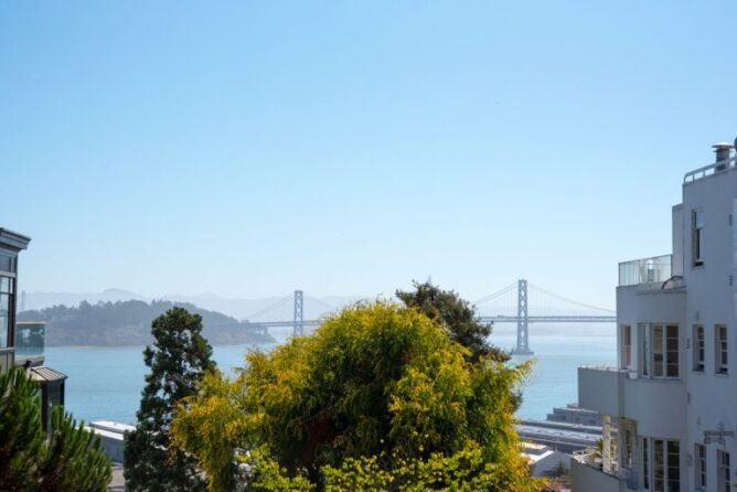 photo of bay bridge in san francisco behind trees with blue sky