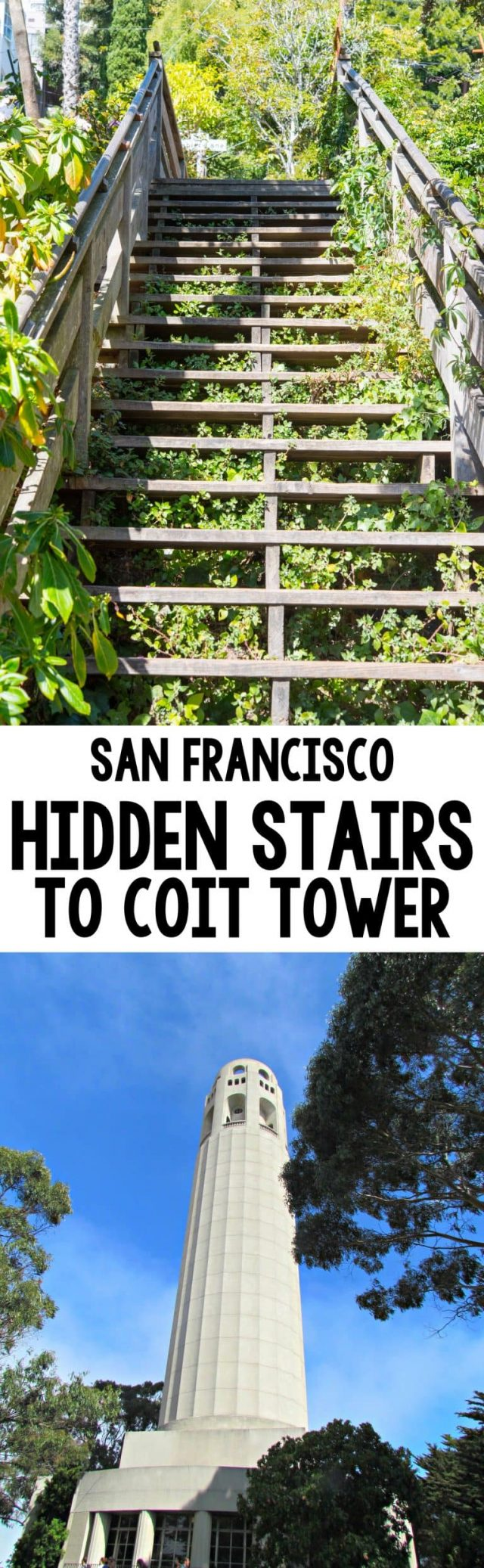 San Francisco Travel: Take the Hidden Steps to Coit Tower for gorgeous views and a nice workout. See the hidden homes and great views of the San Francisco Bay!