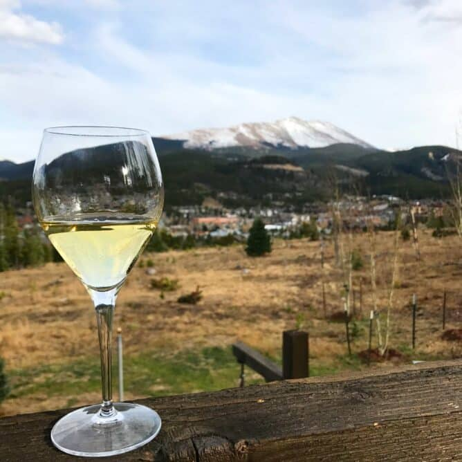 A glass of white wine sitting on a rail with mountains in the background