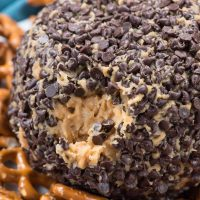 chocolate covered peanut butter cheeseball with bite taken out photo