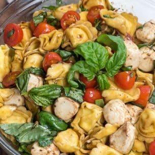 overhead shot of caprese pasta salad in bowl