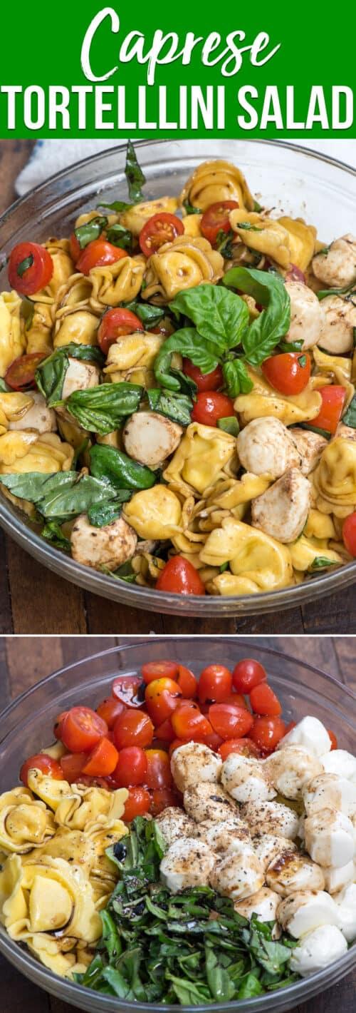 collage of tortellini caprese pasta salad recipe